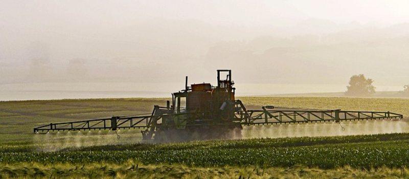 Glyphosat – das stille Gift?