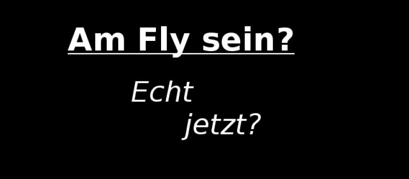 Wahl des Jugendworts des Jahres 2016  Am fly sein? Echt jetzt?