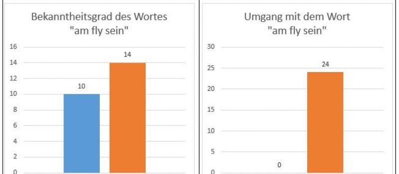 """Das Jugendwort 2016  """"Am Fly sein"""" hat gewonnen"""