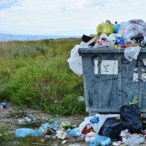 Plastikmüll: Ein großes Problem unserer Gesellschaft